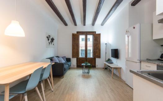 Bonito piso en el Barrio Gótico